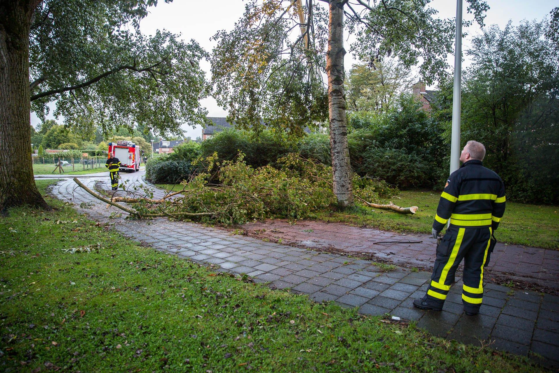 Brandweer verwijdert gevaarlijk hangende takken in Roosendaal